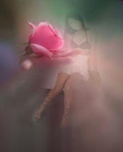 rosa-mariel